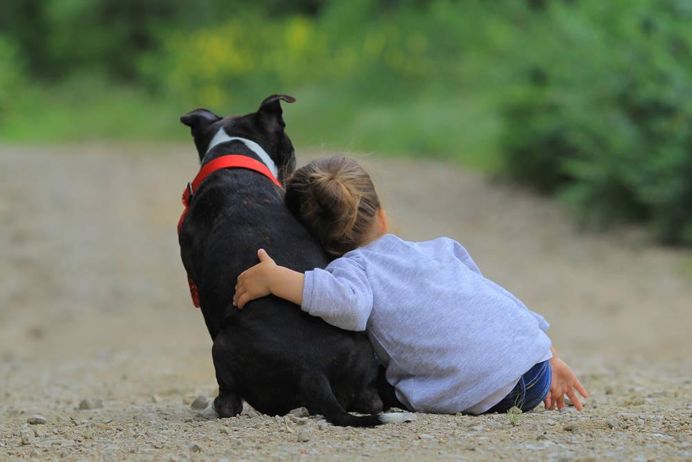 Niños y mascotas: Cómo convivir